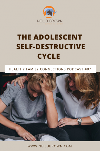 The Adolescent Self-Destructive Cycle
